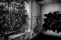 Il s'est échappé!! He has escaped!! (vedebe) Tags: noiretblanc netb nb bw monochrome architecture abandonné decay urbex fleurs