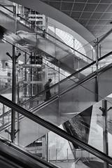 Zig Zag (Pat Charles) Tags: blackwhite bw monochrome architecture interior inside indoor escalator stairs staircase airport dubai unitedarabemirates uae diagonal lines geometry futuristic future metal metallic person people travel tourism traveller traveler nikon