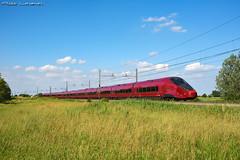 ETR 575 Italo 11 / ES 9985 / Polesella (RO) (Aldo '69) Tags: italotreno ntv etr575 agv alstom italo treno rovigo