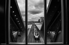 Reading platform 10 © (wpnewington) Tags: reading platforms trains mono monochrome bw railways