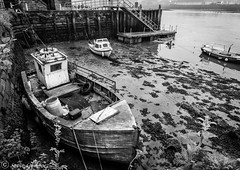 An unused boat moored in a  Little Harbour at Berwick-upon-Tweed. (steve.gombocz) Tags: blacknwhite greyscale monochrome blackwhite bwphotos bw flickrbw bwflickr blackwhitephotos blackwhitephotography blackandwhite bwphotographs bwphotography photosinblackandwhite bwpictures flickraddict flickraddicts blackandwhitephotographs out outandabout flickr exploreflickr berwickupontweed berwick habour boat boats seaweed mud river rivertweed water berwickupontweedbw berwickupontweedblackandwhite flickrblackandwhite exploreberwickupontweed oldboat vessel nikon nikond810 nikoneurope nikonfx nikon2401200mmf40 nikoncamera nikonusers zwartwit neroebianco sortoghvid mustavalkoinen svarthvitt svartoghvitt svartochvitt pretoebranco noiretblanc schwarzundweiss negroyblanco noirblanc schwarzweiss negroblanco pretobranco nerobianco