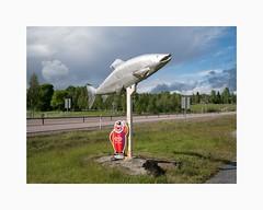 Bjästa, Örnsköldsvik 2017 (Karl Gunnarsson) Tags: norum västernorrlandslän sweden se bjästa örnsköldsvik ångermanland sverige salmon statue gbglace clown e4