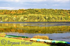 Shawnee State Park in fall (Bryanna_Weaver) Tags: shawnee shawneestatepark pennsylvania bedfordcountypa pa schellsburgpa lake fall landscapes canoes pinetrees lakescapes nikon