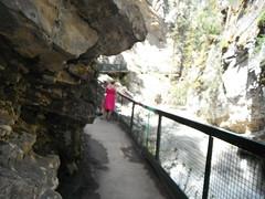 Johnson Canyon  Banff  #albertabound (Mr. Happy Face - Peace :)) Tags: hff canada150 cans2s banffpark naturewalk naturelover flickrfriends art2017 yyc summer fence fencefriday happyfencefriday flickrfriend flickrfriday hiker candid wtbw pink