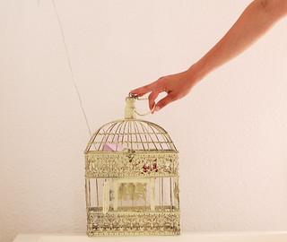 (#Mi mano derecha) Los pájaros no pueden ser enjaulados, ellos son del cielo, ellos son del aire
