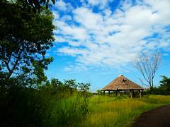 choza (hillary román) Tags: bolívar guayana lallovizna parque paisaje choza naturaleza verde venezuela sudamerica