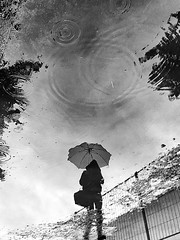 Summer rain (Birdhouse camper) Tags: shotoniphone6s puddle reflection iphone iphone6s umbrella rain blackandwhite blackwhite street