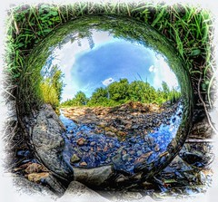 Wading the Stream (clarkcg photography) Tags: orb ball reflective stainlesssteel 12inch stream water sky grass blue green brown rocks pebbles clouds trees sphere reflections crazytuesdaytheme 7dwf