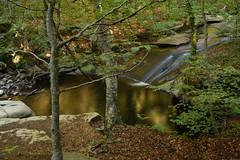 Santa Fe waterfall (Hachimaki123) Tags: paisaje landscape santafe santafedelmontseny montseny parcnaturaldelmontseny cascada water waterfall agua bosque bosc wood forest