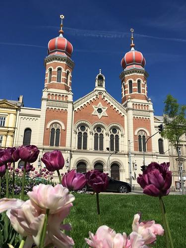 Czech_2017-05-15-103600