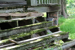 Rotted stairs (seventh_sense) Tags: abandoned deserted derelict decay decayed decaying house home mansion manor manse estate boyds maryland car cars collapsing weathered overgrown woods forest victorian property haunted eerie moss mossy rotted rotten steps stairs