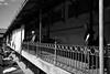 Watching (michael.mu) Tags: leica m240 35mm leicasummicronm1235mmasph leicasummicron35mmf20asph bw portugal porto blackandwhite monochrome streetphotography silverefexpro bolhao mercado mercadodobolhao theleicameet