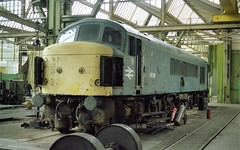 """45039, formerly """"The Manchester Regiment"""" inside Swindon works, 21st March 1983 (colin9007) Tags: br derby sulzer peak class 45 45039 swindon"""