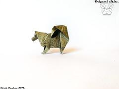 Origami Spitz - Barth Dunkan. (Magic Fingaz) Tags: anjing barthdunkan chien chó dog hond hund köpek origami origamidog perro pies пас пес собака หมา 개 犬 狗