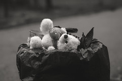 Be Mine (hristo.savov) Tags: teddy bear trash can blackwhite hearth street