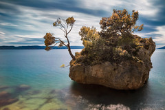 calm before a storm (cherryspicks (on/off)) Tags: tree island sea adriatic longexposure croatia brela mediterranean landscape