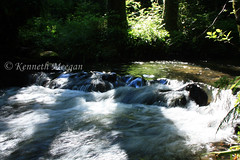 Waterfall on Tintern Stream (Ken Meegan) Tags: waterfallontinternstream waterfall tinternstream tinternwood tinternabbey saltmills cowexford ireland 1762017