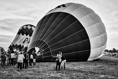 Balloon Inflation Process:  The Effort is There (brev99) Tags: balloons balloonfestival balloonists tulsaballoonfestival blackandwhite luminar aurora macphun d610 tamron35f18vc