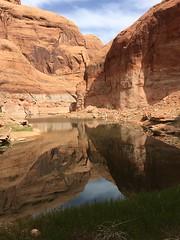 1705_08_3024 x 4032_143 (johnwilletts1) Tags: 2017 arizona lakepowell pageaz rainbowbridge states years tonalea unitedstates us