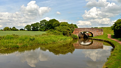 ALONG THE TOW PATH (chris .p) Tags: canal reflection worcesterandbirminghamcanal nikon d610 water worcestershire england june 2017 view countryside uk capture summer sky clouds bridge lock towpath