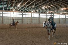 JBC_9197.jpg (Jim Babbage) Tags: krahc annualshow horse bethany horseshow
