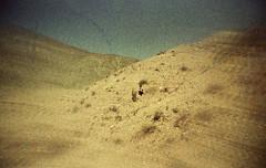 Sentir os mistérios da paisagem (Tuane Eggers) Tags: sentir mistérios paisagem cenário natural terra cactus argentina lufebollini tuaneeggers 35mm film