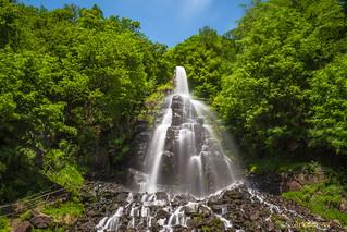 OPYM3815 - 2017-05 - Trusetaler Wasserfall in Thüringen