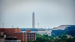 2017.07.02 DC People and Places, Washington, DC USA 7269