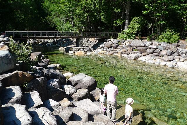 初めて訪れた赤沢渓谷・赤沢自然休養林 キレイな水流を眺めてしばし癒される☆|赤沢森林資料館
