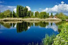 DSC05702 (hofsteej) Tags: middendelfland holland netherlands vlaardingervaart broekpolder april