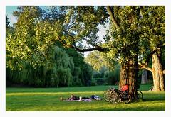 Relax in Vondelpark. (smoothna) Tags: amsterdam netherlands vondelpark bikes relax smoothna fujix30 sunset