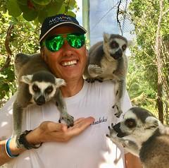 Leapt Upon by Lemurs (jurvetson) Tags: necker island private richard branson philanthropy giving social causes weekend retreat big gratitude