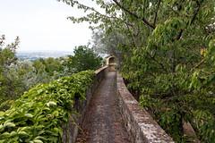 scorci di San Gimignano (Mancio85) Tags: landscape paesaggio vista view green verde toscana tuscany san gimignano italia italy path sentiero mura walls canon 80d