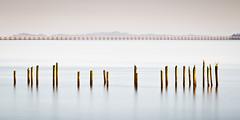 22 Pilings (Ron Rothbart) Tags: 10stopfilter astoria columbiariver nd oregon bridge longexposure neutraldensityfilter pilings