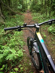 Wet & Slippery Ride 6 (pjen) Tags: nordic boreal maastopyörä pike 275 650b kashima trail bicycle bike 2x11 outdoor vehicle 5010 5010cc 50to01 summer santacruz mtb finland nature forest carbon fullsuspension wet enduro hiilikuitu