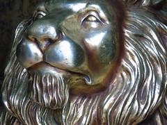 DSC00131 (francesco.dambrosio) Tags: venezia venice veneza biennale arte biennaledivenezia giardini arsenale laguna veneto art artoftheday worldart show world artist artists gondola neon artinart water sunny model lion