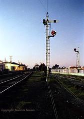 176-10-3976:  Signals soon to be Surplus... (EBRG16) Tags: tgr tasmanianrailways devonport station