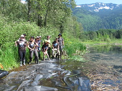 The crew after laying it down (BC Wildlife Federation's WEP) Tags: wetlandkeepers yellowflagiris bcwf workshop education wep wetlandseducationprogram invasive species control research wetland bcwildlifefederation cheamlake cheam rosedale chilliwack