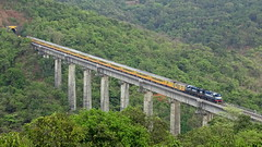A bird's eye view of India's fastest and luxurious train, TEJAS EXPRESS. (Omkar Sawant) Tags: kalyan wdm3d tejas express mumbai goa chhatrapati shivaji terminus karmali ratnagiri scenic konkan central railways maharashtra indian india panval tallest viaduct asia