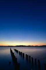 Vertical (Yohsuke_NIKON_Japan) Tags: shimane sanin matsue lakeshinji shinji lake sunset dusk d750 nikon vertical sun japan nature beauty 山陰 島根 宍道湖 日本 自然 夕日 夕暮れ 桟橋 pier