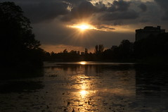 Sunset by Nikon (Darek Drapala) Tags: sun sky sunset silhouette skyskape nature nikon nikond300s natural night panasonic poland polska panasonicg5 park warsaw warszawa water waterscape reflection reflects mystic mirror