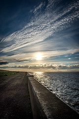 DSC_4502 (Evo800) Tags: walks cooper sky grass cloulds sunset water forth scotland nikon d610 deer skylark