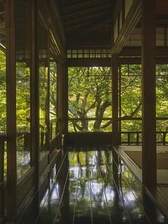 Rurikoin 瑠璃光院. Kyoto