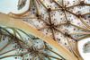 "Radovljica (Peter Gutierrez) Tags: photo europe european eastern republic slovenia slovenian slovenians slovene republika slovenija radovljica old town ancient medieval house houses building buildings peter gutierrez ""peter gutierrez"" petergutierrez film photograph photography radmannsdorf upper carniola občina"