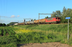 DB Cargo 1611 @ Herfte Aansluiting (Sicco Dierdorp) Tags: db dbc schenker cargo serie1600 zwolle herfte aansluiting meppel onnen kijfhoek