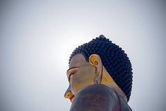 A DI DA PHAT QUAN THE AM BO TAT DAI THE CHI BO TAT GUANYIN KWANYIN BUDDHA 9180 (ketnoivietnam) Tags: amazing affectionate amitabha architecture art asia avalokitesvara awesome bangkok beautifull beijing palace bhutan bodhisattva bouddha buddha tooth relic temple buddhism buddhist china chinatown chua excellent fantastic flickraward gold golden guanyin hainan hdr history hong kong indian information japan korea kuanim kuanyin kwanyin laos laughing 佛 观音 観音 寺