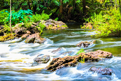 Hillsborough River State Park. June 2017 (tarell_sallie) Tags: tampa florida hillsborough hillsboroughcounty tampabay hillsboroughriver hillsboroughriverstatepark usa unitedstates america unitedstatesofamerica june 2017 canon canont3i edit lightroom copyright statepark nature rapid rapids river freshwater wildlife landscape hiking beautiful exposure slowexposure green rocks