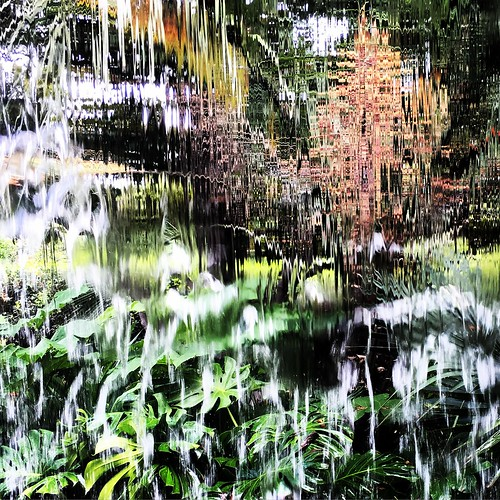 """Abstracted Arboretum • <a style=""""font-size:0.8em;"""" href=""""http://www.flickr.com/photos/57802765@N07/35369797612/"""" target=""""_blank"""">View on Flickr</a>"""