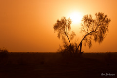 Sunset (aminshahnazari) Tags: sunset isfahan sun maranjab desert iran amin shahnazari کویر مرنجاب اصفهان امین شاه نظری
