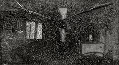 Morris, Portland (austin granger) Tags: morris portland oregon windshield shattered glass abstract wipers cracked pattern j4 dormobile lines broken film chamonix largeformat